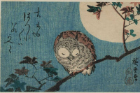Sleeping owl on the branch on the background of the full moon