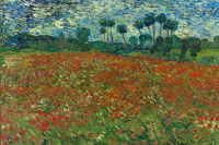 Винсент Ван Гог. Маковое поле
