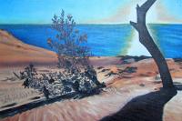 Закатное солнце в песках