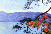 Suruga Bay. Azaleas