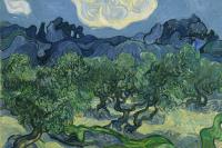 Винсент Ван Гог. Оливковые деревья на фоне Альп