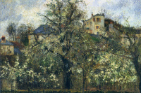 Orchard with flowering trees. PONTOISE