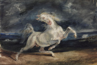 A frightened horse in the moonlight