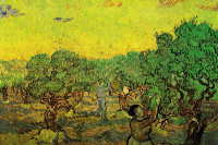 Vincent van Gogh. The olive harvest