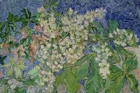 Винсент Ван Гог. Ветвь цветущего каштана