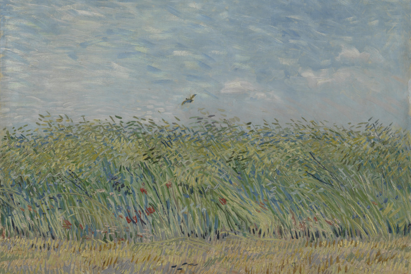 Vincent van Gogh. Wheat field with a lark