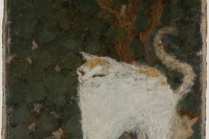 Pierre Bonnard. White cat