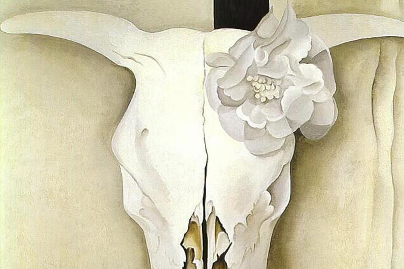 Джорджия О'Киф. Череп коровы и коленкоровые розы
