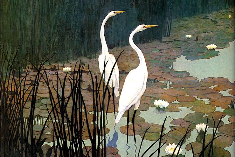 Newell Converse Wyeth. Egrets
