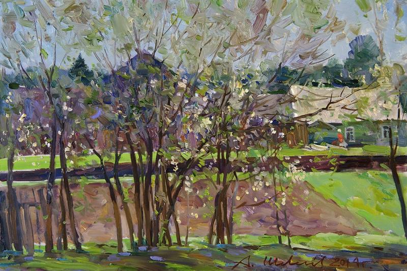 Alexander Victorovich Shevelyov. Flowering plum Sherehovichi. D. V. P., oil 27 x 40 cm 2014