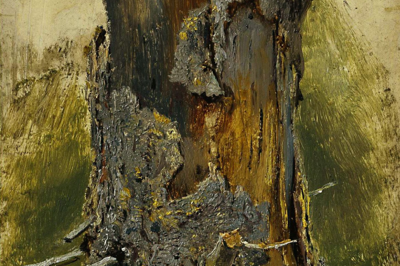 Ivan Ivanovich Shishkin. Bark on dry trunk