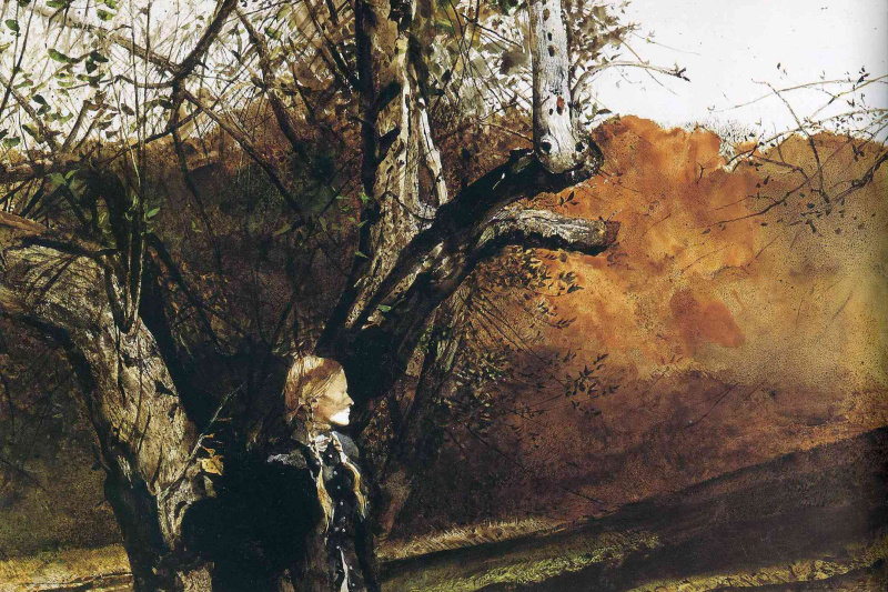 Andrew Wyeth. Asylum