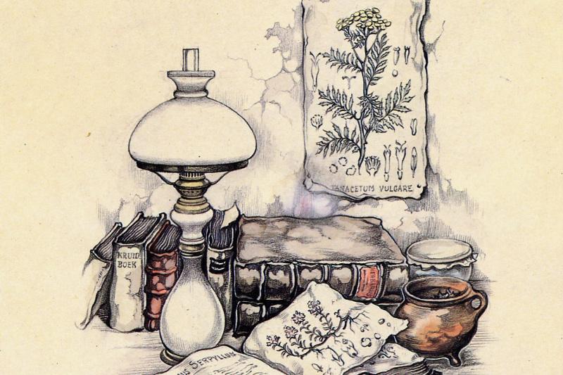 Anton Peak. The book of plants