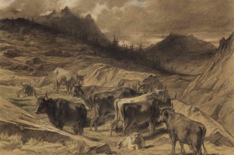 Rose Bonhur. A herd of cows in Auvergne
