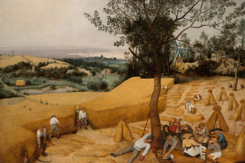 "Pieter Bruegel The Elder. Harvest. The ""Seasons"" cycle, the end of summer"