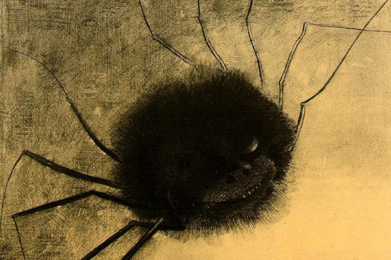 Одилон Редон. Улыбающийся паук
