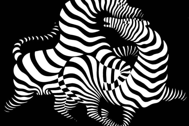 Victor Vasarely. Zebra