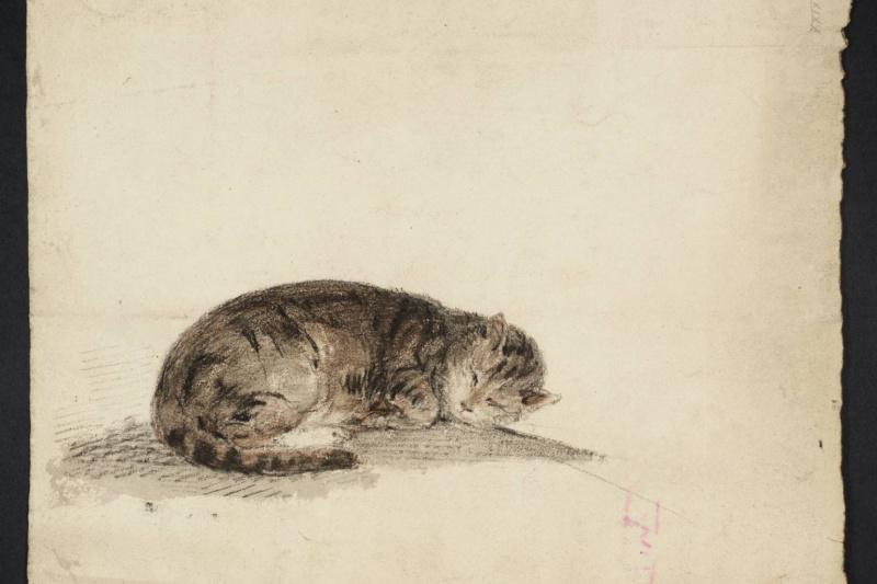 Joseph Mallord William Turner. Sketch sleeping cat