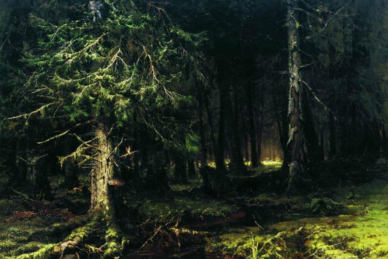 Julius Klever. Virgin forest