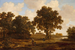 The forest in The Hague with a view on Palace Huis ten Bosch