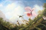 Мартин Джонсон Хед. Два колибри и орхидея