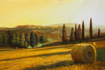 Савелий Камский. Жаркое солнце в полях Тосканы