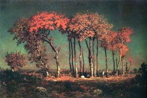 Under the birches, evening