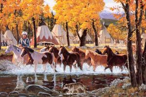 Рон Стюарт. Пони осенью