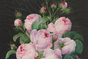 Пьер-Жозеф Редуте. Розовые розы в вазе