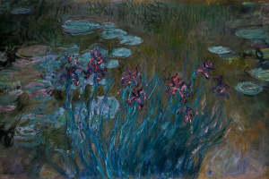 Irises and water lilies