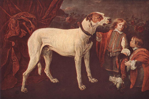 Ян Фейт. Большая собака