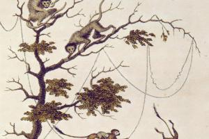 """Уильям Блейк. Обезьяны в джунглях. Джон Габриель Стедман. """"Рассказ о пятилетней экспедиции против восставших негров Суринама"""""""