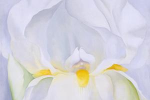 Джорджия О'Киф. Белый ирис. № 7