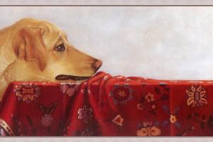 Лорена Пью. Собака