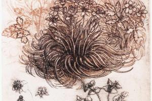 Леонардо да Винчи. Звезда Вифлеема и другие растения