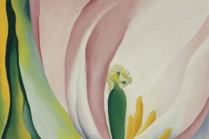 Georgia O'Keeffe. Pink Tulip