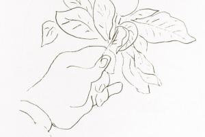 Анри Матисс. Рука Матисса, держащая плод