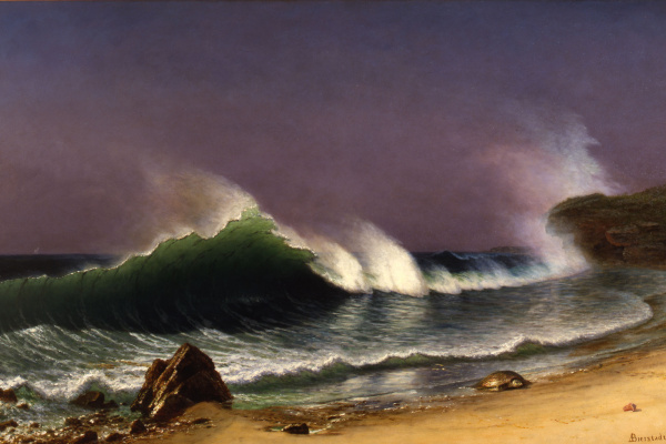 Albert Birštadt. Bahamas. Coast after the storm