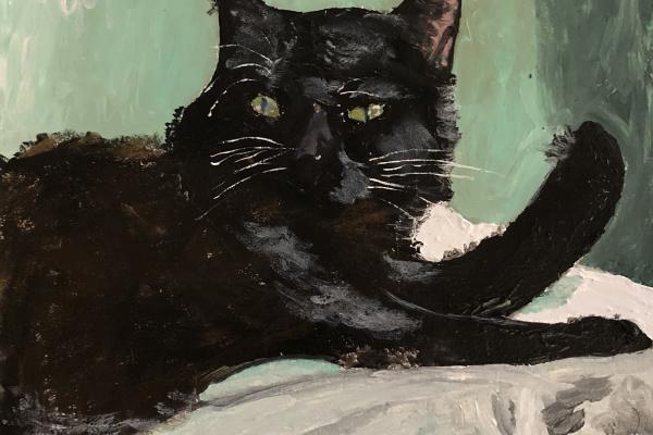 Nikita Chugunov. Black cat in green room
