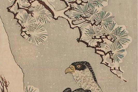 """Утагава Хиросигэ. Сокол на стволе заметенной снегом сосны. Серия """"Птицы и цветы"""""""