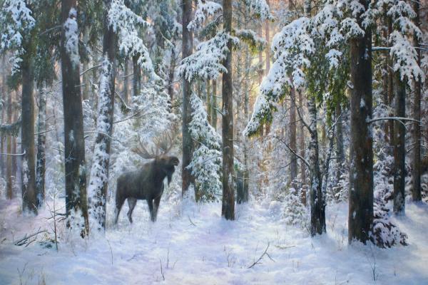 Сергей Владимирович Дорофеев. Winter forest host