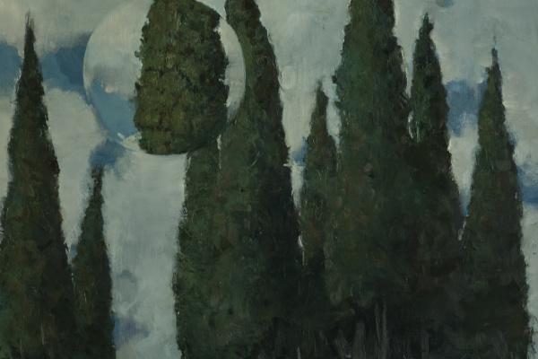 Semen Agroskin. Observation 9. Cypress