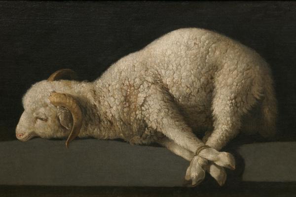 Francisco de Zurbaran. The lamb of God (Agnus Dei)