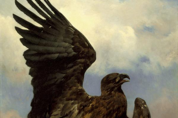 Роза Бонёр. Раненый орел