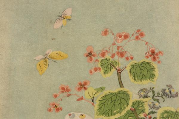 Suzuki Harunobu. Cat, butterfly and begonias (attributed to Harunobu)