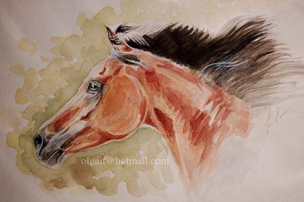 Olga Itina. Arabian horse head