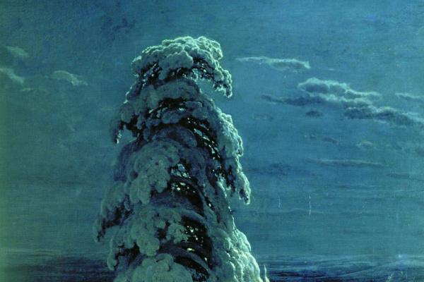 "Ivan Ivanovich Shishkin. ""In the Northern wilderness ..."""