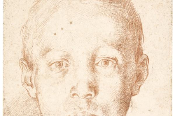 Agostino Carracci. Portrait of a boy