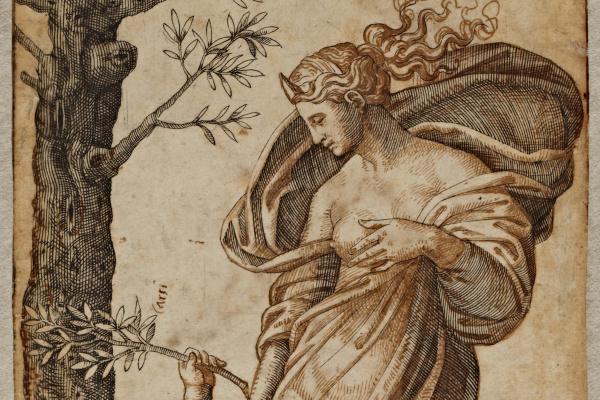 Маркантонио Венециано Агостино Раймонди. Аллегория мира или Примирение Минервы и Купидона