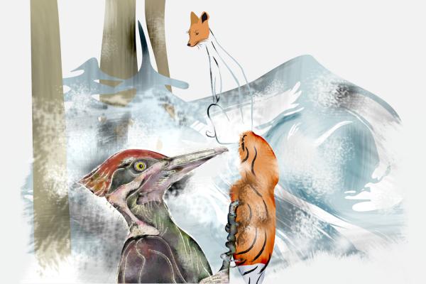 Alain Veselova. A woodpecker pecking a Fox tail